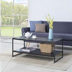 Modern Large Rectangular Coffee Table (Black)