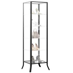 Curio Cabinet Display with Glass Door and Lock for Collectibles and Other Items to Showcase , Du ...