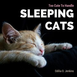 Too Cute To Handle. Sleeping Cats: A Heart-warming Photo Book for Cat Lovers, with Beautiful Quo ...
