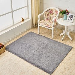 Junovo Ultra Soft Contemporary Fluffy Thick Indoor Area Rug for Home Decor Living Room Bedroom K ...