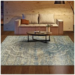 Superior Salford Collection Area Rug, 10mm Pile Height with Jute Backing, Fashionable and Afford ...