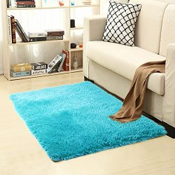 Shag Modern Indoor Outdoor Area Rugs, ULTRA SOFT Runner for Living Room Sitting Room Nursery Roo ...