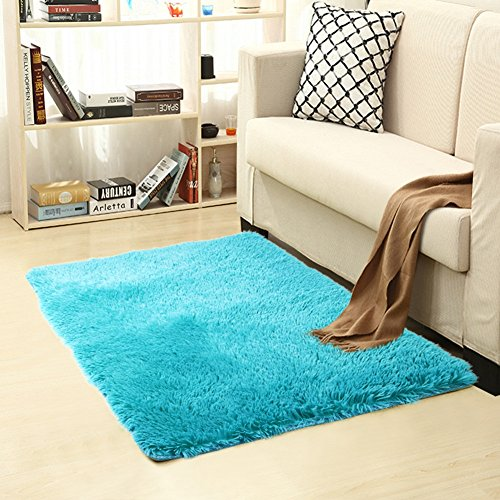breathtaking indoor outdoor carpet living room | Shag Modern Indoor Outdoor Area Rugs, ULTRA SOFT Runner ...