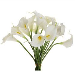Lily Artificial Flowers,Orangeskycn 10Pcs Mini Artificial Calla Wedding Flowers Bouquet Calla Li ...