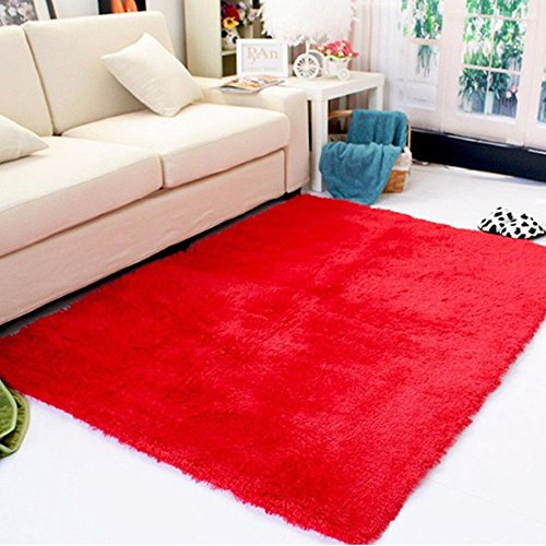 DODOING 3-5 Days Delivery Red Fluffy Living Room Carpet Shaggy Soft Area Rug Rectangle Floor Mat ...