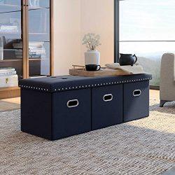 Nathan James 72201 Payton Foldable Ottoman, Bench, Black