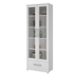 Manhattan Comfort Serra 1.0 Bookcase Collection Modern 5 Shelf Bookcase Display Case with 2 Glas ...