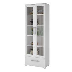 Manhattan Comfort Serra 1.0 Bookcase Collection Modern 5 Shelf Bookcase Display Case with 2 Glas ...