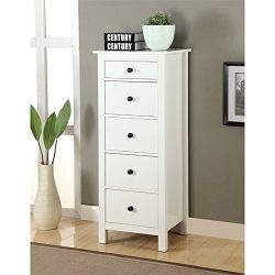 Bowery Hill 5 Drawer Accent Chest in White