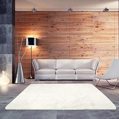 BlueSnail Super Ultra Soft Modern Shag Area Rugs, Bedroom Livingroom Sittingroom Floor Rug Carpe ...