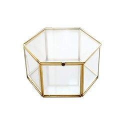 Lijuan Qin Gold Jewelry Trinket Glass Box, Decorative Clear Glass Box Jewelry Chest/Storage Disp ...