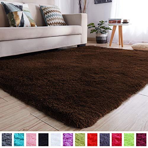 PAGISOFE Soft Comfy Rugs for Living Room Bedroom Area Indoor Modern Fluffy Rugs Decor Plush Vele ...
