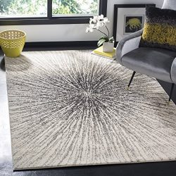 Safavieh Evoke Collection EVK228K Contemporary Burst Black and Ivory Area Rug (5'1″  ...
