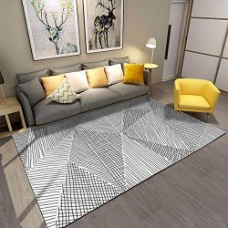 Living Room Rugs, 4'x 6′ YAMTION Modern Multi-Function Area Rugs Collection, Non Sli ...