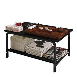 Rectangular Coffee Table with Storage Shelf (Black)