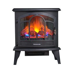 thermomate Electric Fireplace Stove, 23 Inches Portable Freestanding Fireplace with Thermostat a ...