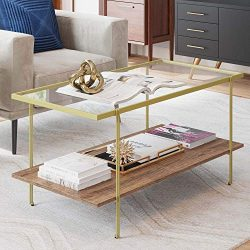 Nathan James 31201 Asher Mid-Century Rectangle Coffee Table Glass Top and Rustic Oak Storage She ...