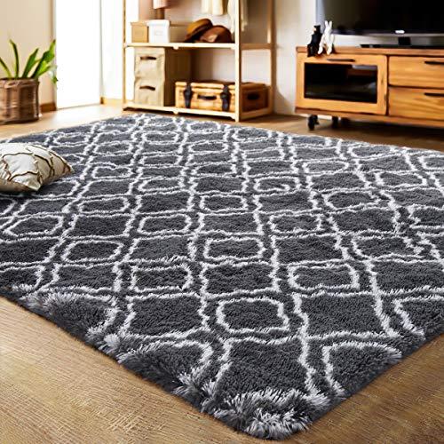 LOCHAS Luxury Velvet Shag Area Rug Mordern Indoor Plush Fluffy Rugs, Extra Soft and Comfy Carpet ...
