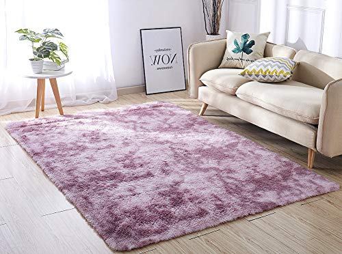 ACTCUT Super Soft Indoor Modern Shag Area Silky Smooth RugsFluffy Anti-Skid Shaggy Area Rug Dini ...
