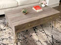 Forest Series Modern Coffee Table with Golden Legs and Artistic Carving (Grey Wash)