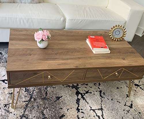 Forest Series Modern Coffee Table with Golden Legs and Artistic Carving (Rustic Oak)