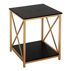 GHQME Industrial End Table,2-Tier Side Table with Storage Shelf,Sturdy Metal Frame,in Living Roo ...